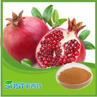 Free sample natural pure Pomegranate seed oil