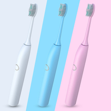 Auto-timer adult electric toothbrush with brush head holder automatic toothbrush