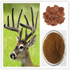 /product-detail/natural-deer-velvet-antler-extract-with-competitive-price-60252094666.html