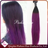 The Best Grade 3pcs Malaysian Virgin Hair Straight Hair Weave Ombre Black Purple Two Tone Ombre Hair Extensions