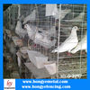 Anping HONGYE stainless steel bird cage wire mesh