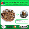 Manufacture Pure Natural Radix Salvia Miltiorrhiza Extract Powder