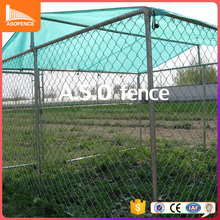 10ft*10ft dog cage hot-dipped galvanized pipe dog kennels