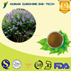 Treatment dysmenorrhea of liver protection medicine Vitex agnus-castus extract 0.5% Agnuside
