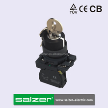 Salzer (TUV, CE and CB Approved)SA22-AG21 Key Operate Push Button Switch