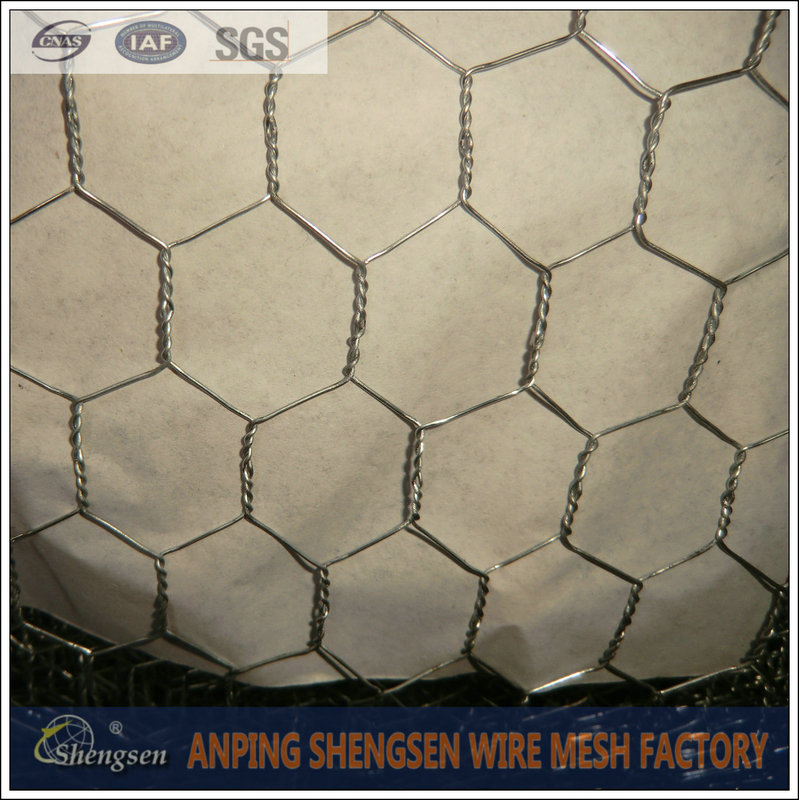 hot dipped galvanized chicken wire poultry/ chicken fence wire netting