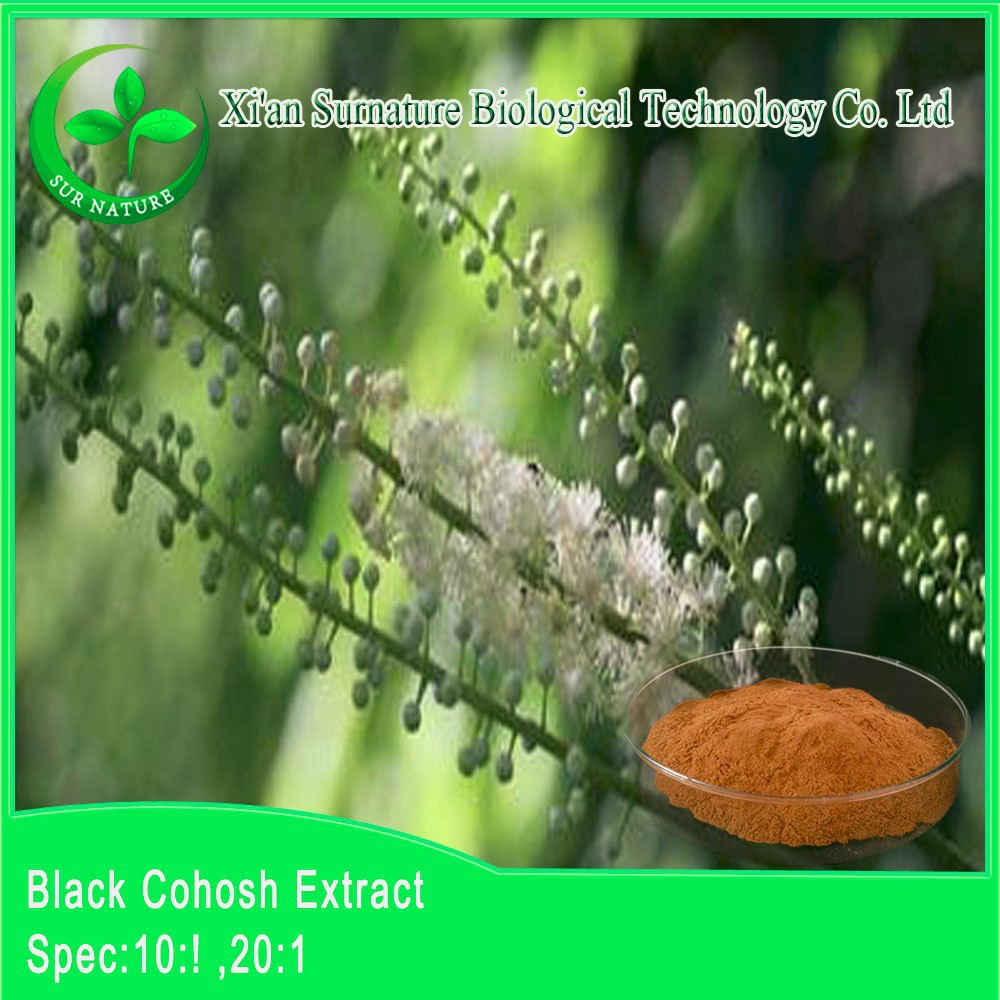Pure black cohosh extract/black cohosh herb