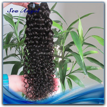 Tangle Free Malaysia Hair Natural Malaysian Hair Weave Loose Curly