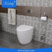 Floor Mounted Installation Type White Italian Toilet for Bathroom