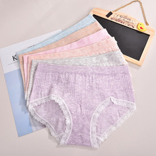 Lace Panties - Colorful Trim Hipster Seamless Underwear