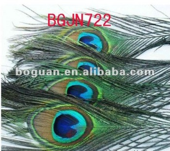 wholesale fashion natural peacock feather