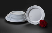 Party Hotel Wedding Disposable Plastic Plate and Dinner Plates