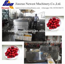 Popular automatic fruit stonce extractor/Plum core remover machine/date core pitting machine