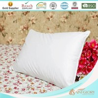 Customized Vacuum Packed Pillow