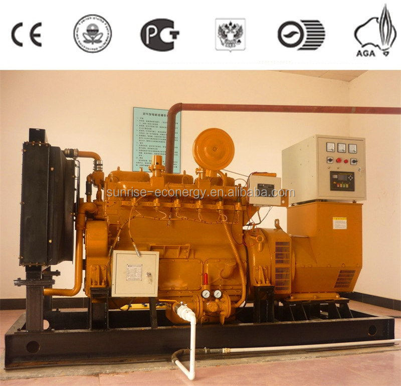 Top level best sell biogas generator stes