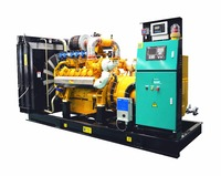 400kW 500kVA Googol Biomass Electric Power Generator
