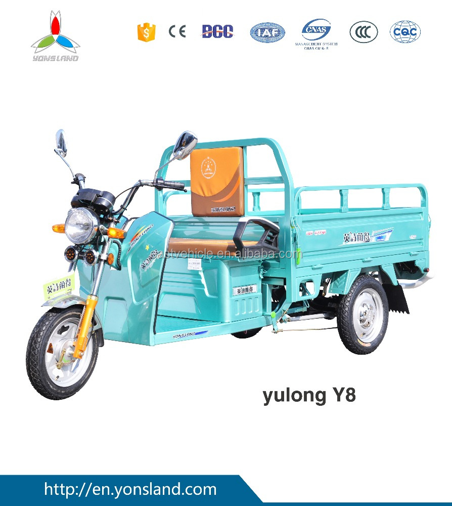 48V500W electric battery tricycle for cargo used in farm battery rickshaw for cargo