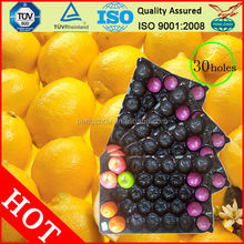 China Suplier/SGS/for fruit/ disposable trays