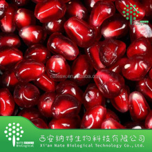 Healthy food pomegranate seed extract powder Polyphenol 60%