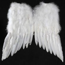 big white feather angel wings