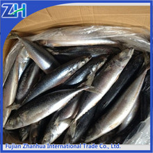 japan quality frozen pacific mackerel fish, caballa fish china factory price