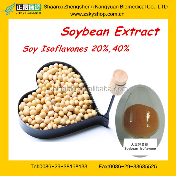 Wholesale Natural Soybean Extract from GMP professional manufacturer