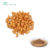Dried Apricot Powder, Apricot Kernel Powder, Apricot Juice Powder
