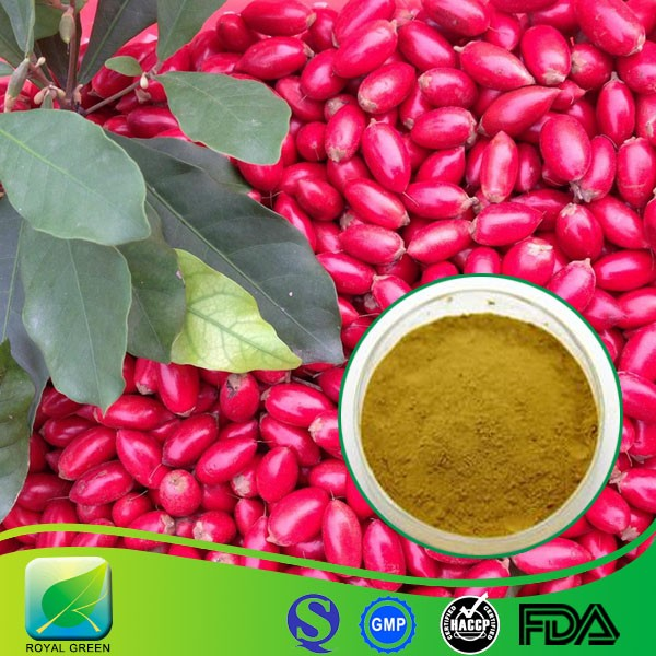 100% Natural synsepalum dulcificum miracle fruit Extract Powder