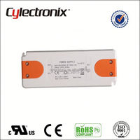 Free Sample 24w-48w CC LED Dimmable waterproof led driver