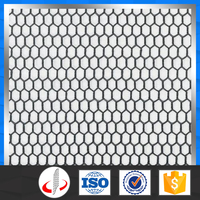 PVC Coated Chicken Wire Mesh/Dog Cages