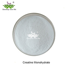 DN Specially Supply High Quality 99% Creatine