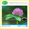 Pure natural Red Clover Extract/Trifolium Pratente Extract Powder/40%Isoflavones