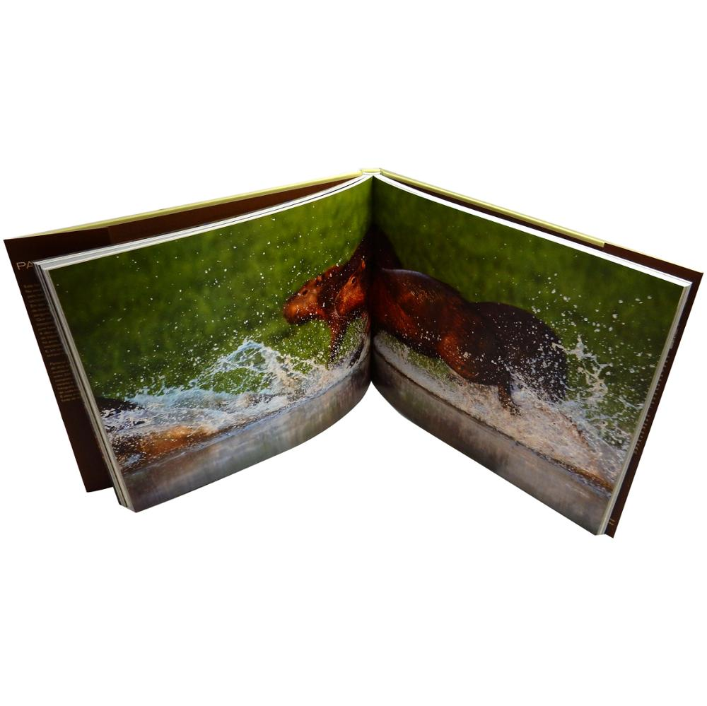 Low cost high quality photo album <strong>printing</strong>