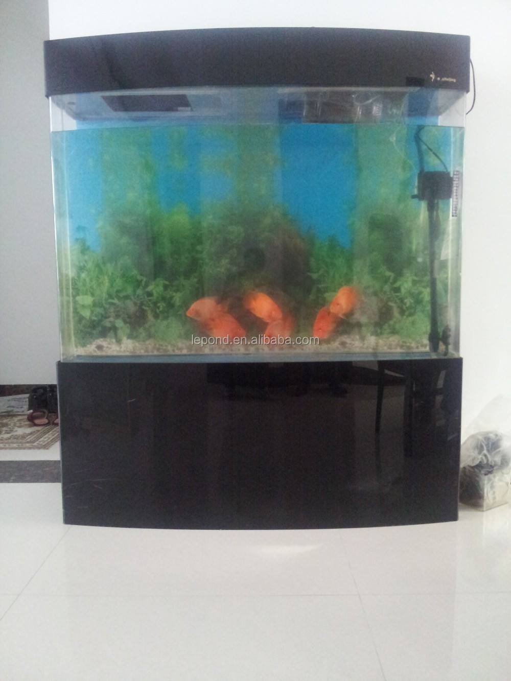 N387 display wholesale acrylic aquarium fish tank buy for How to build an acrylic fish tank
