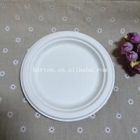 Biodegradable Sugarcane Tableware Bagasse Disposable Paper Plate dish dinnerware