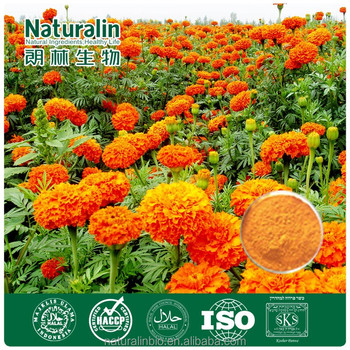 Natural Red-orange color Marigold Extract Zeaxathin 5%-20% (ISO,HACCP,HALAL,Kosher)