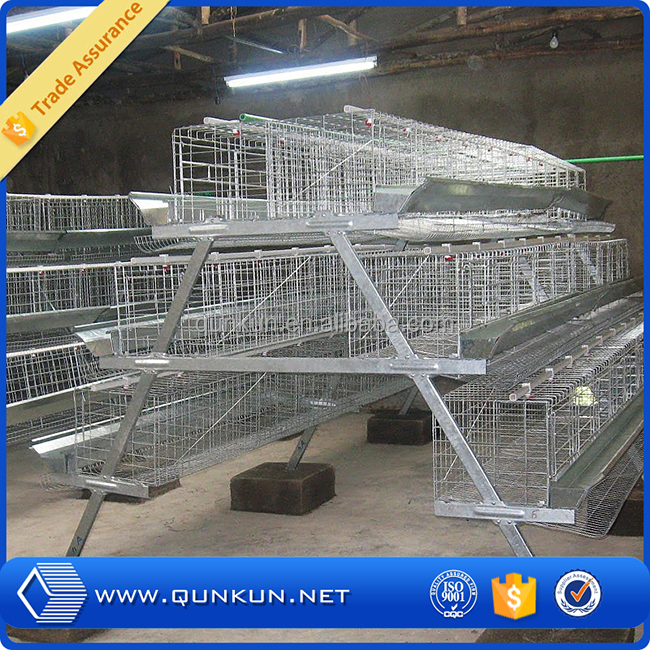 Special new arrival livestock product chicken layer cage