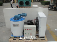 Snow Flake Ice Machine,300KG Ice Flakes Making Machine