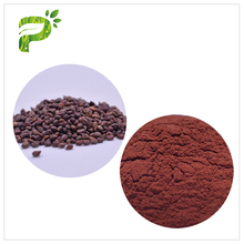Plant Extract Powder Natural Supplements Anti-bacterial Grape Seed Extract