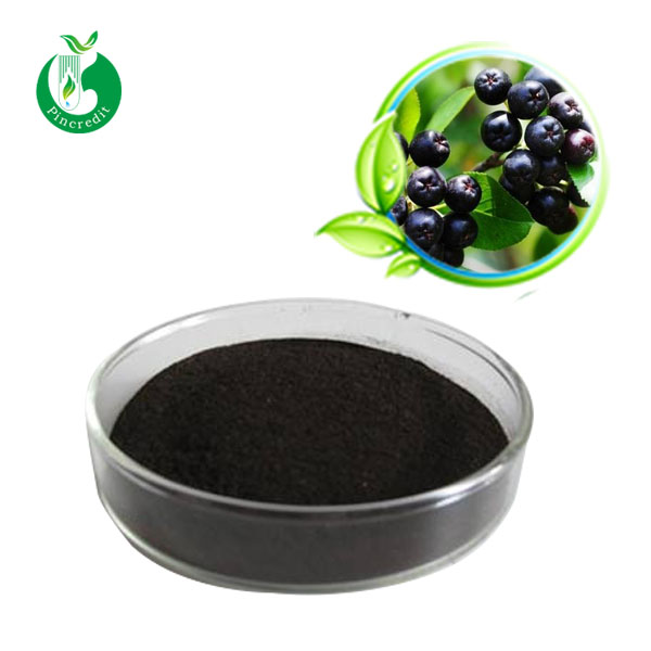 Factory directly supply black chokeberry extract 17% anthocyanin powder