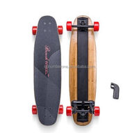 Wholesales Electric Longboard Skateboard dual motor cheap skateboard with remote