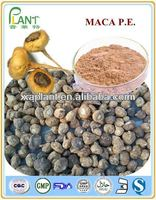 100% pure maca extract powder for making maca coffee