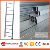 aluminium scaffolding ladder clamp,ladder frame scaffolding,industrial ladder