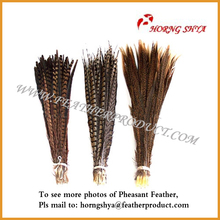 Natural Pheasant Lady Pheasant Feahter Tail