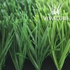 VIVATURF W shaped football grass in China