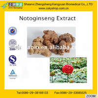100% Pure natural Notoginseng Root Extract/Sanchi Extract from GMP manufacturer
