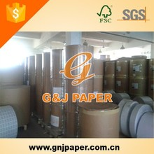 210mm Vinyl Thermal Fax Paper Rolls