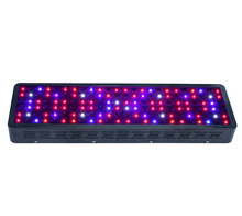 New design 36w full spectrum wall washer led grow light with low price