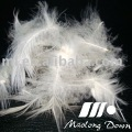 Washed White Duck Feather & Duck Down (95% Feather, 5% Down)