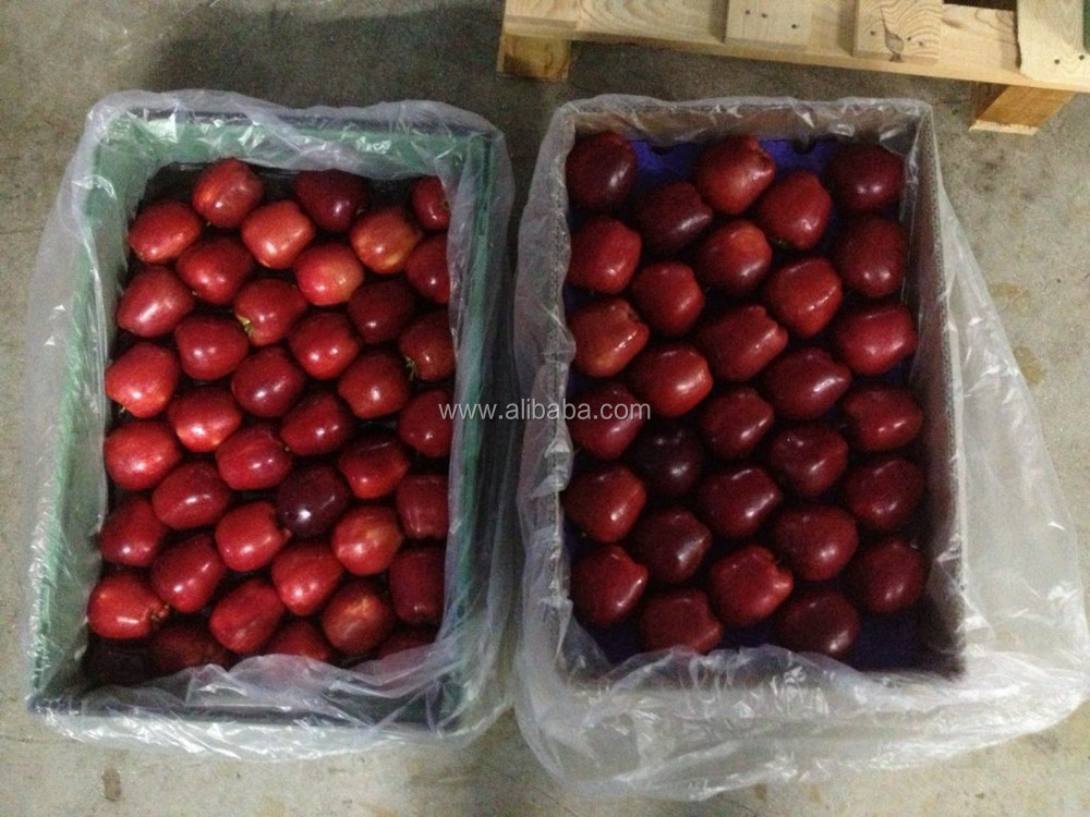 Turkish Red Apples